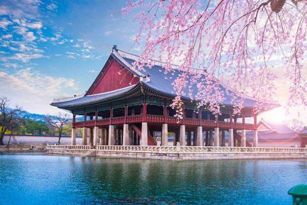 Viajar a Corea del Sur con Viajes Nakara