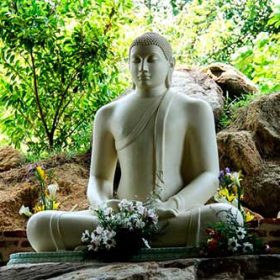 VIAJE A INDIA: Especial Yoga y Meditación