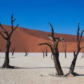 VIAJE A NAMIBIA: Fly & Drive