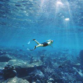 VIAJE A MALDIVAS: Buceo en Guraidhoo