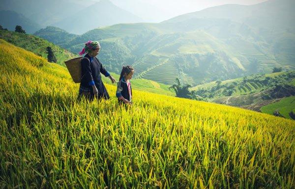 Viajar a Vietnam con Viajes Nakara