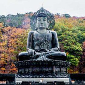 VIAJE A COREA DEL SUR: Corea del Sur Express