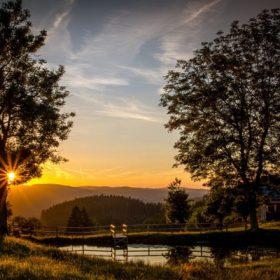 VIAJE A ALEMANIA: La magia de la Selva Negra