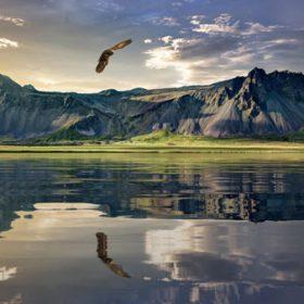 VIAJE A NUEVA ZELANDA: Maravillas de Nueva Zelanda
