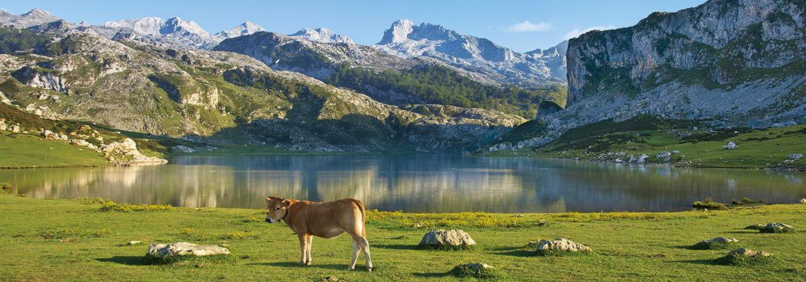 viajar por españa asturias